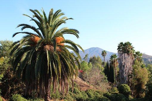 San Miguel, San Diego, Mountain, California
