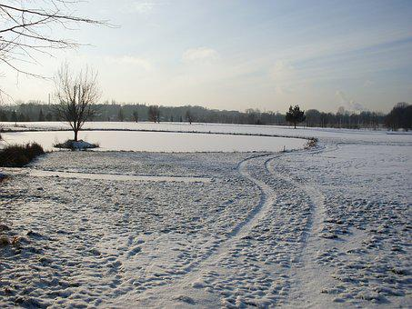 Winter, Snow, Lake, Ice, Pond, Frozen, Traces, Tree