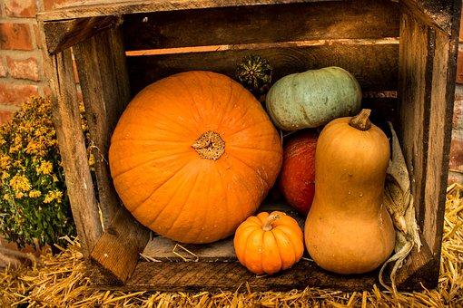 Pumpkin, Autumn, Pumpkin Decoration, Halloween, Orange