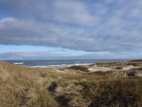 Denmark, Henne Strand, Dunes, Coast, Sea