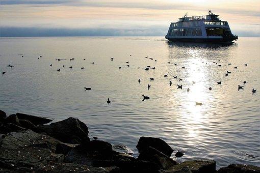 Ferry, Lake, Morning Sun, Peace Of Mind, Birds