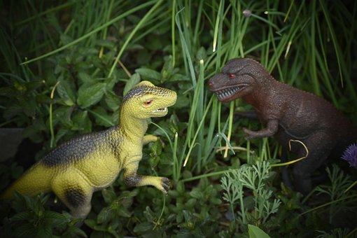 Toy Dinosaurs, Dinosaur, Jurassic, Plastic, Play