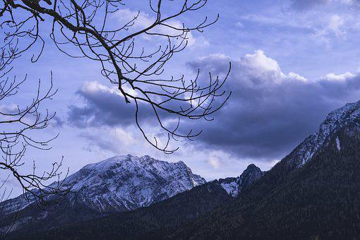 Aesthetic, Mountain, Clouds, Mood, Sunset, Branch, Tree