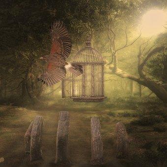 Adler, Cage, Finger, Raptor, Forest, Freedom, Composing