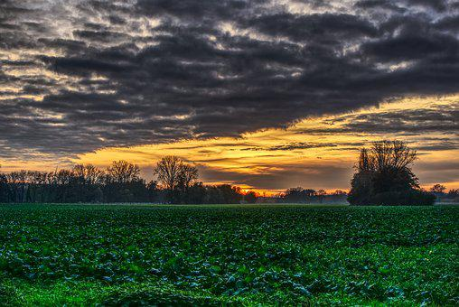 Sunset, Clouds, Mood, Drama, Field, Green, Nature
