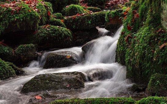 Teutoburg Forest, Silver Valley, Landscape, Forest