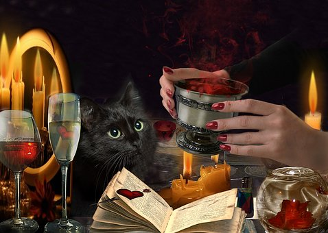Potion Hands, Cat, Fingers, Witchcraft