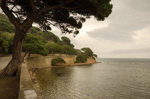 South Of France, France, Coast, Coastal Road, Nature