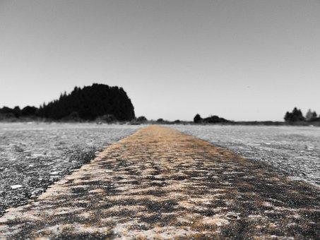 Road, Trees, Distant, Long, Long Road Ahead, Ahead