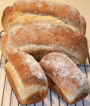 Bread, Multi Grain, Corn, Rye, Flax, Oats, Food