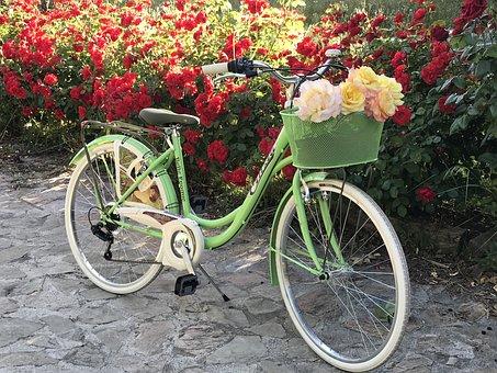 Bicycle, Flowers, Sport, Spring, Cyclist, Wheels, Bike