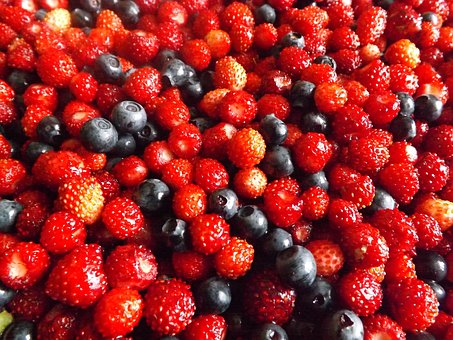 Berry, Summer, Forest, Harvest, Closeup, Forest Berries