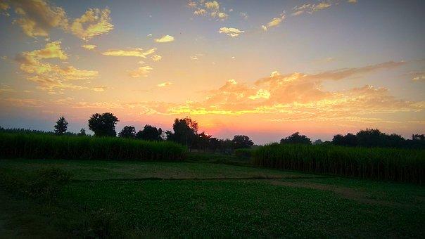 Village, Landscape, Tree, Dawn, Sunset, Grass, Nature