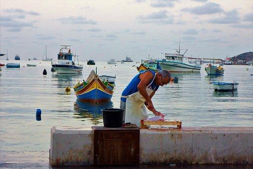 Sea, Fish, Market, Fish Prepare, Malta, Morning, Port