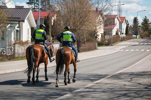 The Police, Finnish, Mounted Police, Horse, City