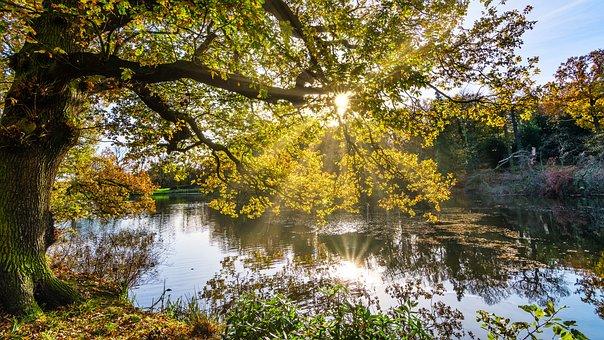 Autumn, Lake, Sunrays, Radiance, Reflections, Yorkshire