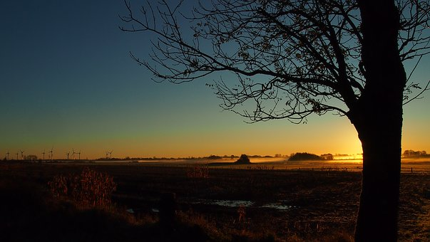 Sunset, Dawn, Landscape, Panorama, Tree, Dusk, Nature