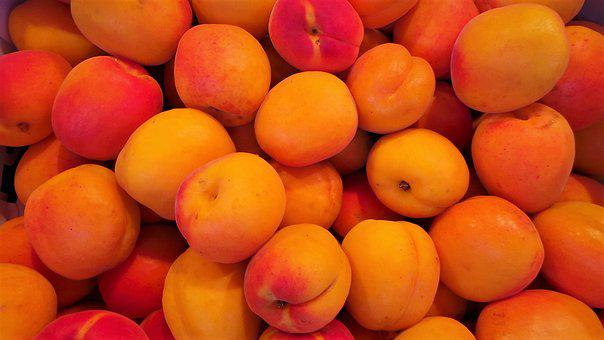 Fruit, Apricot, Health