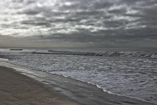 New Zealand, Beach, Nature, View, Water, The Coast