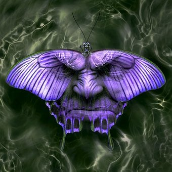 Cd Cover, Fantasy, Butterfly, Face, Dream, Mystical