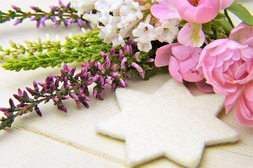 Erika, Winter Heath, Rose, Blossom, Bloom, Flower