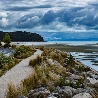 New Zealand, The Coast, Cove, Nature, View, Water
