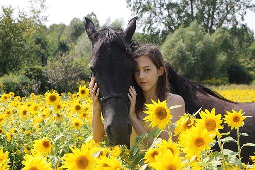 Horse, Animal, Girl, Nature, Portrait, Sunflower