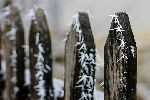 Frosty Fence, Frost, Winter, Hoary, Cold, Rime, Ice