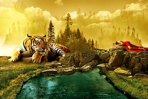 Landscape, Tiger, Animal, Manipulation, Photoshop