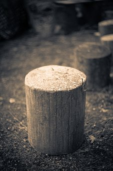 Wood Stump, Hack Stock, Grayscale, Black And White