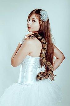 With A Snake, Boa Constrictor, Snake, Tamer, Reptiles