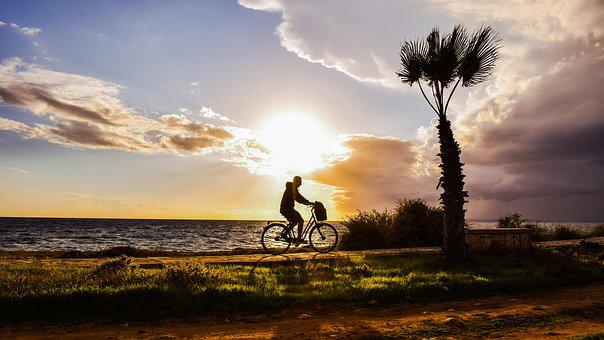 Afternoon, Landscape, Scenery, Path, Man, Bike, Light