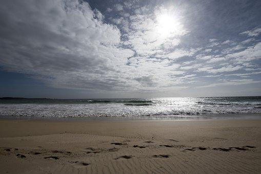 Beach, Tracks, Track, Print, Sand, Sea, Landscape