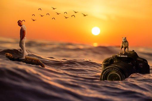 Marine, See, Landscape, Summer, Sunset, Offer, Solar