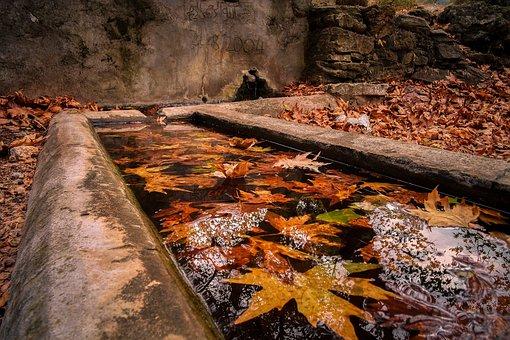 Nature, Autumn, Peace, Leaf, Village, Fountain