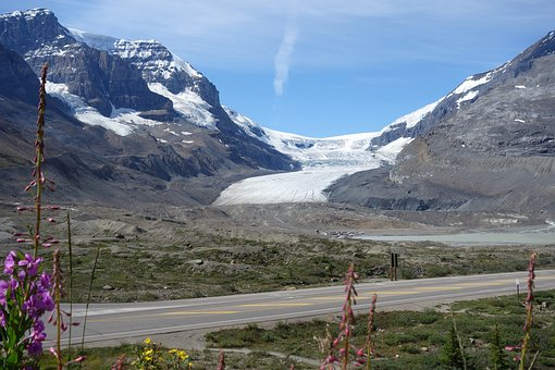 Mountains, Glacier, Road, Plant, Canada, Icefield