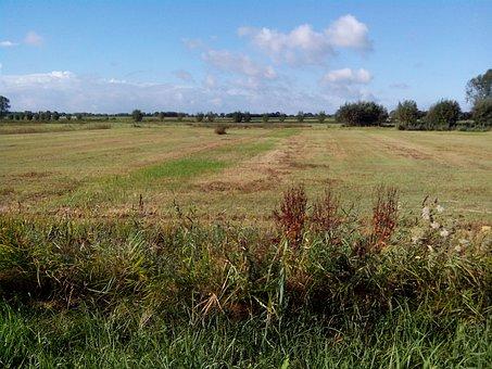 Fields Low, Oudenbosch, Nature Reserve, Nature