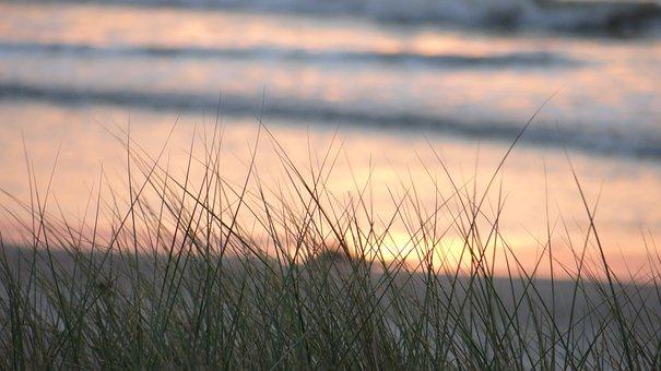 Sunset, Beach, Sea, Evening Shore, Evening