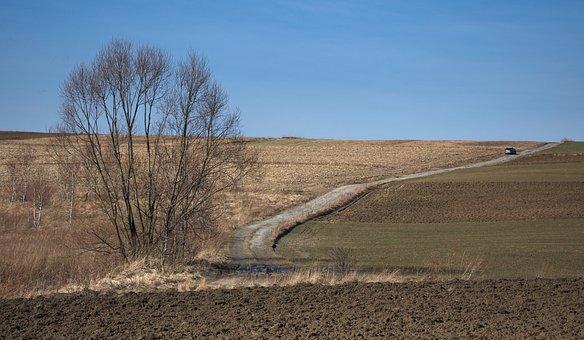 Landscape, Way, Autumn, Auto, The Vehicle, Trip, Fields