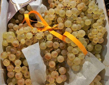 Grapes, Wine, Vine, Winegrowing, Gasthof, To Grape