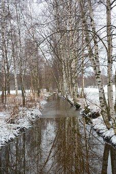 Nature, Winter, Birch, River, Cold, Branches, Landscape