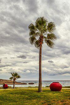 Cyprus, Ayia Napa, Nissi Beach, Autumn, Palm Trees, Sky