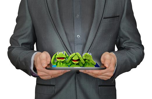 Not Hear, Not See, Do Not Speak, Kermit, Frog