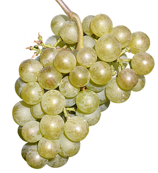 Wine Grapes Free, Fruit, Delicious, Grapes, Eat
