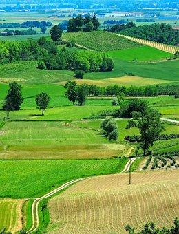 Monferrato, Cuccaro, Piemonte, Italy, Meadows, Prato