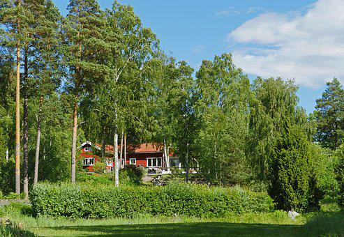 Swedish House, Holiday House, Summer House, Forest