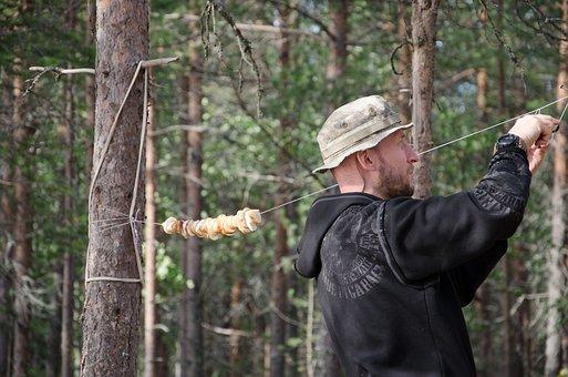 Mushrooms, Dry, Tree Fungus, Food, Forest