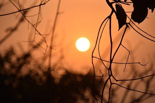 Sunset, Sun, Sunrise, Light, Summer, Nature, Sky