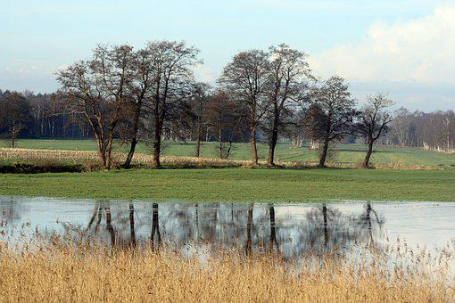 Mirroring, Auen, Grove, Moorland