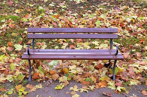 Park, Autumn Bench, Bench, Nature, Foliage, Rest